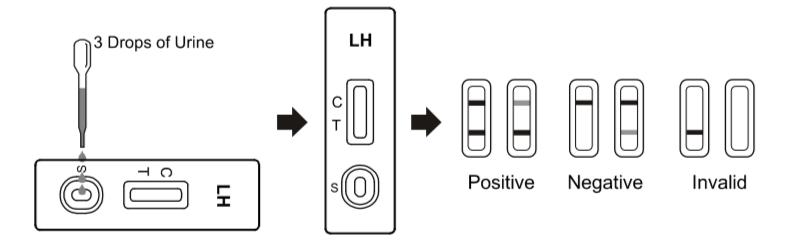 Cassette Pregnancy Test